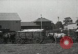 Image of Cotton ginning New Orleans Louisiana USA, 1919, second 20 stock footage video 65675022211