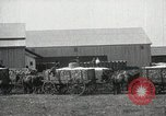 Image of Cotton ginning New Orleans Louisiana USA, 1919, second 29 stock footage video 65675022211