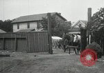 Image of Cotton ginning New Orleans Louisiana USA, 1919, second 52 stock footage video 65675022211