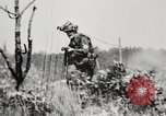 Image of Rifle squad in attack United States USA, 1965, second 30 stock footage video 65675022233