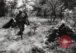 Image of Rifle squad in attack United States USA, 1965, second 52 stock footage video 65675022233
