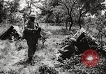 Image of Rifle squad in attack United States USA, 1965, second 53 stock footage video 65675022233