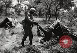 Image of Rifle squad in attack United States USA, 1965, second 54 stock footage video 65675022233