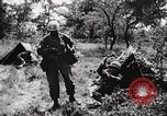 Image of Rifle squad in attack United States USA, 1965, second 55 stock footage video 65675022233