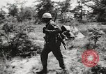 Image of Rifle squad in attack United States USA, 1965, second 56 stock footage video 65675022233