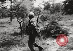 Image of Rifle squad in attack United States USA, 1965, second 57 stock footage video 65675022233