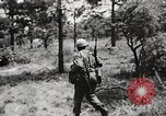 Image of Rifle squad in attack United States USA, 1965, second 58 stock footage video 65675022233
