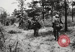 Image of Rifle squad in attack United States USA, 1965, second 60 stock footage video 65675022233