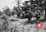 Image of Rifle squad in attack United States USA, 1965, second 61 stock footage video 65675022233