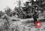 Image of Rifle squad in attack United States USA, 1965, second 62 stock footage video 65675022233