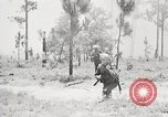 Image of Sergeant Collins' team advances United States USA, 1965, second 2 stock footage video 65675022234