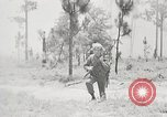 Image of Sergeant Collins' team advances United States USA, 1965, second 3 stock footage video 65675022234
