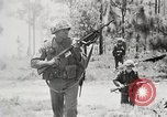 Image of Sergeant Collins' team advances United States USA, 1965, second 11 stock footage video 65675022234