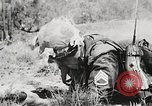 Image of Sergeant Collins' team advances United States USA, 1965, second 46 stock footage video 65675022234