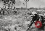 Image of Sergeant Collins' team advances United States USA, 1965, second 53 stock footage video 65675022234