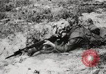 Image of Sergeant Collins' team advances United States USA, 1965, second 55 stock footage video 65675022234