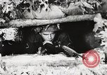 Image of Rifle squad in Defense Part II United States USA, 1965, second 29 stock footage video 65675022238
