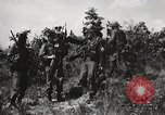 Image of Rifle Squad members United States USA, 1965, second 16 stock footage video 65675022239