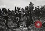Image of Rifle Squad members United States USA, 1965, second 21 stock footage video 65675022239