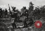 Image of Rifle Squad members United States USA, 1965, second 22 stock footage video 65675022239