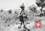 Image of Rifle Squad members United States USA, 1965, second 24 stock footage video 65675022239