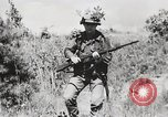 Image of Rifle Squad members United States USA, 1965, second 25 stock footage video 65675022239