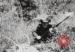 Image of Rifle Squad members United States USA, 1965, second 28 stock footage video 65675022239