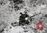 Image of Rifle Squad members United States USA, 1965, second 29 stock footage video 65675022239