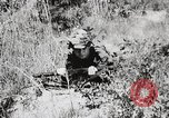 Image of Rifle Squad members United States USA, 1965, second 30 stock footage video 65675022239