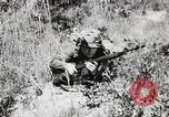 Image of Rifle Squad members United States USA, 1965, second 33 stock footage video 65675022239