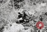 Image of Rifle Squad members United States USA, 1965, second 34 stock footage video 65675022239