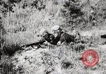 Image of Rifle Squad members United States USA, 1965, second 40 stock footage video 65675022239