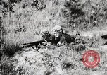 Image of Rifle Squad members United States USA, 1965, second 42 stock footage video 65675022239