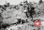 Image of Rifle Squad members United States USA, 1965, second 47 stock footage video 65675022239
