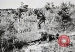 Image of Rifle Squad members United States USA, 1965, second 49 stock footage video 65675022239