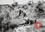Image of Rifle Squad members United States USA, 1965, second 50 stock footage video 65675022239