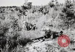Image of Rifle Squad members United States USA, 1965, second 51 stock footage video 65675022239