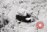 Image of Rifle Squad members United States USA, 1965, second 55 stock footage video 65675022239