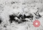 Image of Rifle Squad members United States USA, 1965, second 62 stock footage video 65675022239