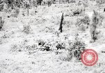 Image of Rifle Squad members United States USA, 1965, second 28 stock footage video 65675022240