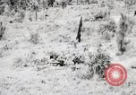 Image of Rifle Squad members United States USA, 1965, second 29 stock footage video 65675022240