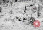 Image of Rifle Squad members United States USA, 1965, second 30 stock footage video 65675022240