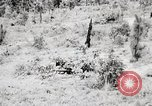 Image of Rifle Squad members United States USA, 1965, second 31 stock footage video 65675022240