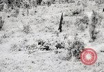 Image of Rifle Squad members United States USA, 1965, second 32 stock footage video 65675022240