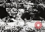 Image of Rifle Squad members United States USA, 1965, second 38 stock footage video 65675022240