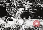 Image of Rifle Squad members United States USA, 1965, second 40 stock footage video 65675022240