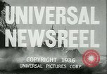 Image of Horse named Pompoon New York United States USA, 1936, second 12 stock footage video 65675022412