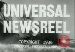 Image of Horse named Pompoon New York United States USA, 1936, second 13 stock footage video 65675022412