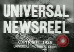 Image of Horse named Pompoon New York United States USA, 1936, second 15 stock footage video 65675022412