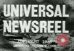 Image of Horse named Pompoon New York United States USA, 1936, second 17 stock footage video 65675022412